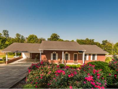 Bluff City Single Family Home For Sale: 214 Sparrow Road