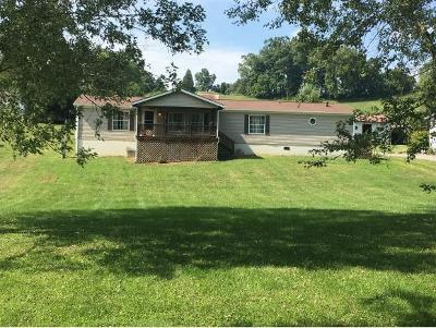 Bluff City Single Family Home For Sale: 1042 Pleasant Grove Rd.