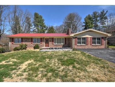 Bristol VA Single Family Home For Sale: $124,900