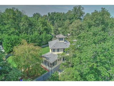 Single Family Home For Sale: 652 Summer Sound Road