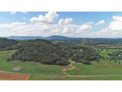 Washington-Tn County Residential Lots & Land For Sale: TBD Ducktown Road