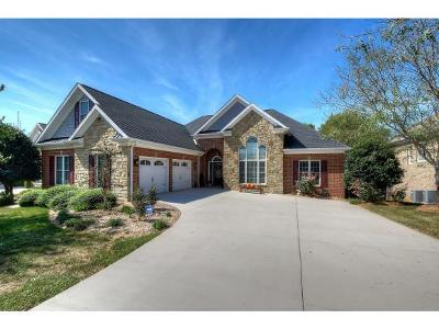Kingsport Single Family Home For Sale: 2224 Valley Falls Court