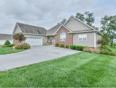 Piney Flats Single Family Home For Sale: 1020 Rachels Way