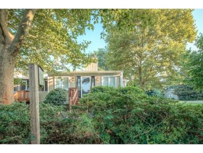 Bristol TN Condo/Townhouse For Sale: $165,250
