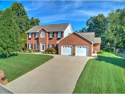 Kingsport Single Family Home For Sale: 3028 Wandering Drive