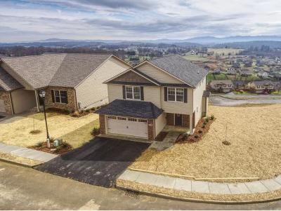 Jonesborough Single Family Home For Sale: 672 Birds Eye View