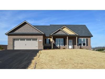 Jonesborough Single Family Home For Sale: 1116 Peaceful Dr