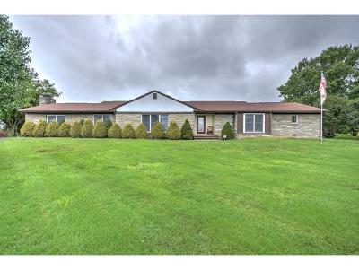 Greeneville Single Family Home For Sale: 5602 Asheville Hwy