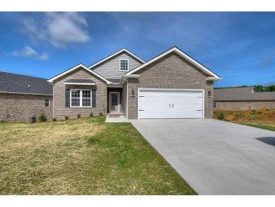 Piney Flats Single Family Home For Sale: 1090 Osler Ct
