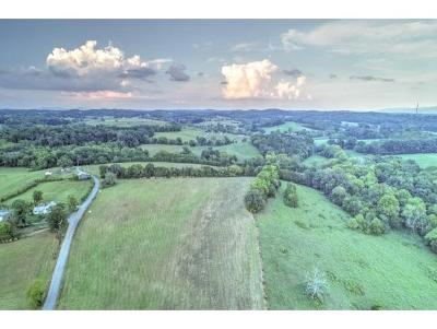 Greene County Residential Lots & Land For Sale: LOT 1,   2 Timber Ridge Rd