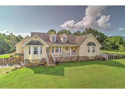 Greeneville Single Family Home For Sale: 1025 Cedar Creek Road