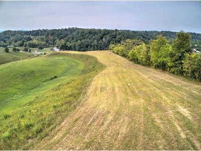 Greene County Residential Lots & Land For Sale: Union Road