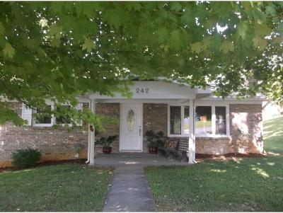 Bluff City Single Family Home For Sale: 242 Redstone Dr