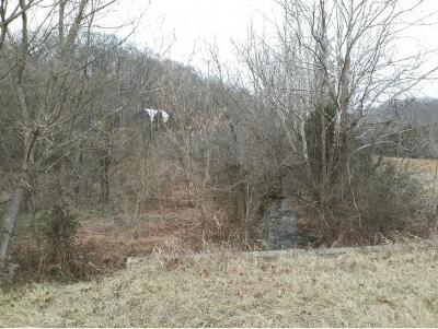 Greene County Residential Lots & Land For Sale: Kingsport Hwy