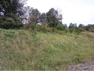 Johnson City Residential Lots & Land For Sale: TBD Airport Rd.