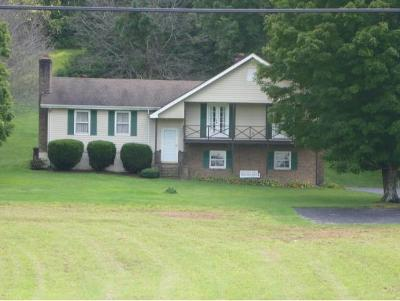 Abingdon Single Family Home For Sale: 13422 Countiss