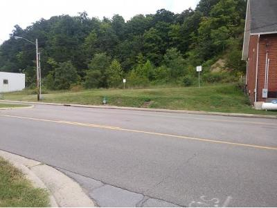Johnson City Residential Lots & Land For Sale: TBD Water St.
