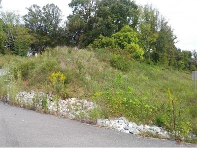 Washington-Tn County Residential Lots & Land For Sale: TBD Airport Rd.