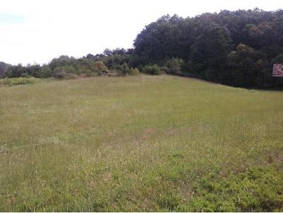 Bluff City Residential Lots & Land For Sale: TBD Highway 19e