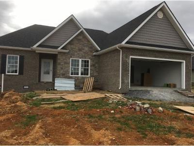 Jonesborough Single Family Home For Sale: 1360 Peaceful Drive