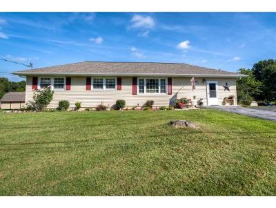 Bristol Single Family Home For Sale: 108 Walnut Rd