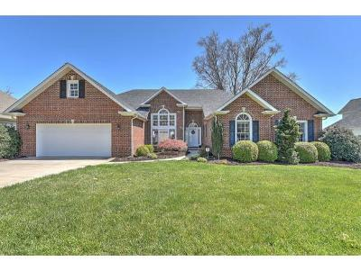 Johnson City Single Family Home For Sale: 222 Michaels Ridge Blvd.