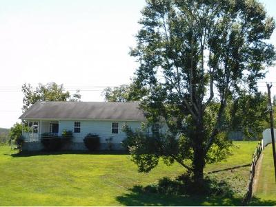 Greeneville Single Family Home For Sale: 17 Baileyton Main St