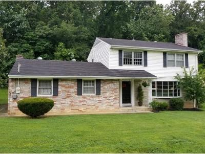 Kingsport Single Family Home For Sale: 5636 Apache