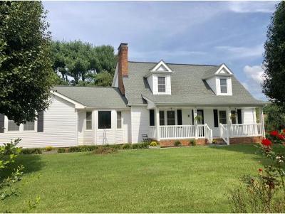 Bristol Single Family Home For Sale: 4241 Old Jonesboro Road