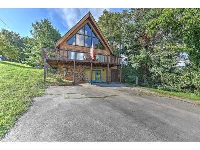 Kingsport Single Family Home For Sale: 1027 Fain