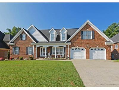 Kingsport Single Family Home For Sale: 1748 Buckingham Court