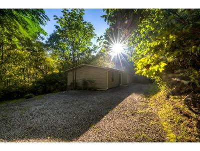 Bristol Single Family Home For Sale: 495 Deck Valley Road