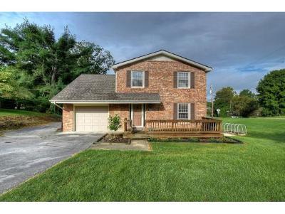 Kingsport Single Family Home For Sale: 1020 Amersham Road