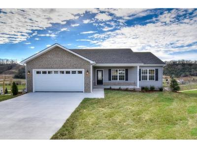 Kingsport Single Family Home For Sale: 2939 Southbridge Rd