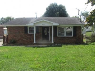 Single Family Home For Sale: 317 Roosevelt St