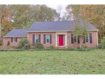 Kingsport Single Family Home For Sale: 828 Ridgefields Dr