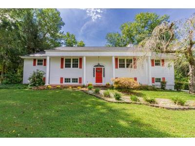 Kingsport Single Family Home For Sale: 2145 Heatherly Road
