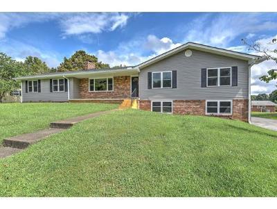 Johnson City Single Family Home For Sale: 2102 Bartlett St