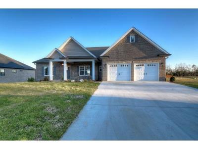 Piney Flats Single Family Home For Sale: 3313 Allison Meadows