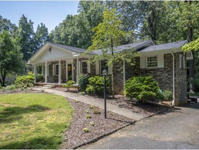 Johnson City Single Family Home For Sale: 1203 Woodland Avenue