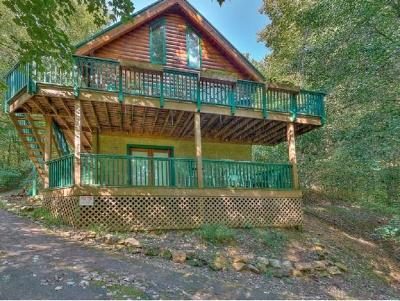 Butler Single Family Home For Sale: 570 Banjo Ridge Rd