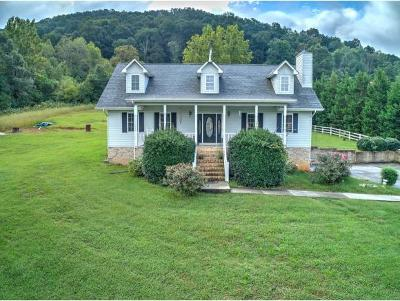 Kingsport Single Family Home For Sale: 2219 Rock Springs Road
