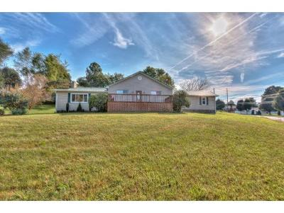 Bristol VA Single Family Home For Sale: $149,000