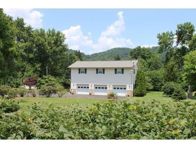 Rogersville Single Family Home For Sale: 711 E. McKinney