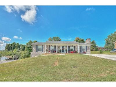 Kingsport Single Family Home For Sale: 1209 Caribbean