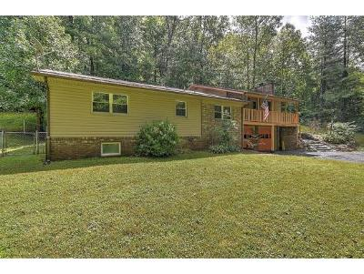 Elizabethton Single Family Home For Sale: 361 Long Hollow