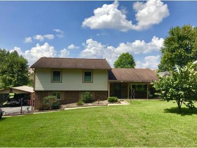 Johnson City Single Family Home For Sale: 212 Hemlock Lane