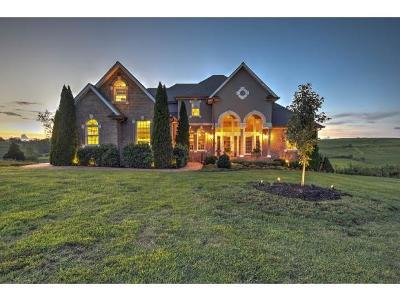 Abingdon Single Family Home For Sale: 18557 Old Jonesboro Rd