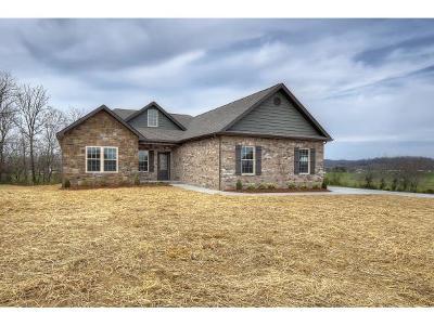 Jonesborough Single Family Home For Sale: 1328 Peaceful Drive