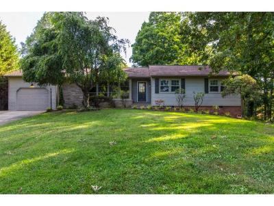 Kingsport Single Family Home For Sale: 4406 Oak Tree Lane
